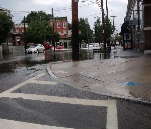 Quail Street Albany
