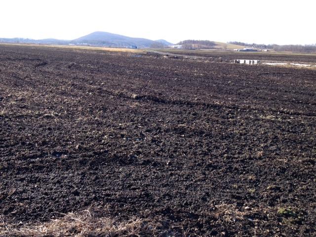 Black Dirt region, Orange County, NY