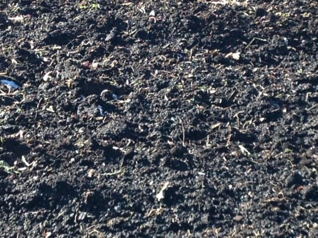 Black Dirt, Orange County, NY