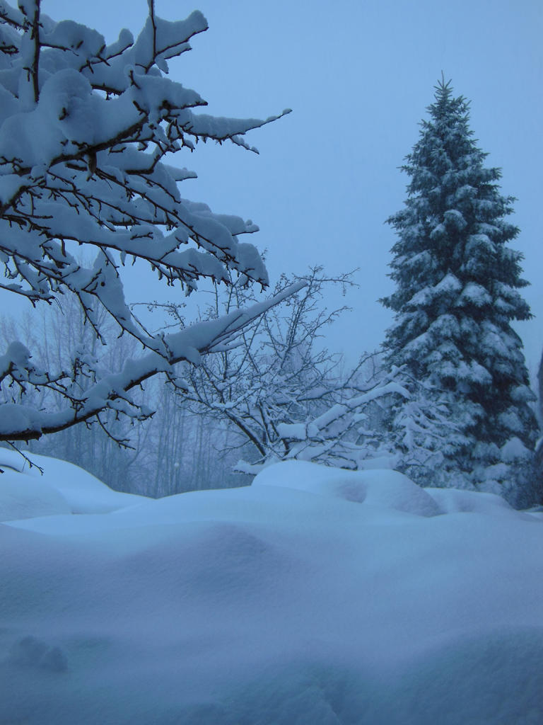 File photo of snow