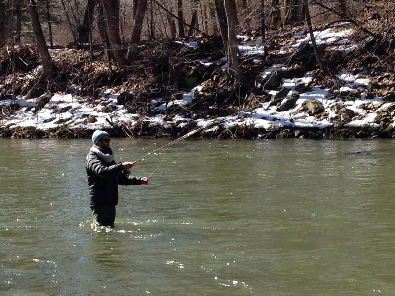 Wamc spring series it 39 s trout fishing season in new york for Nys fishing seasons