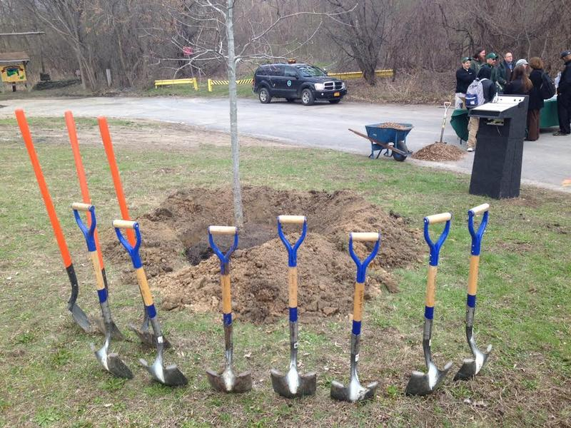 Shovels ready for ceremony