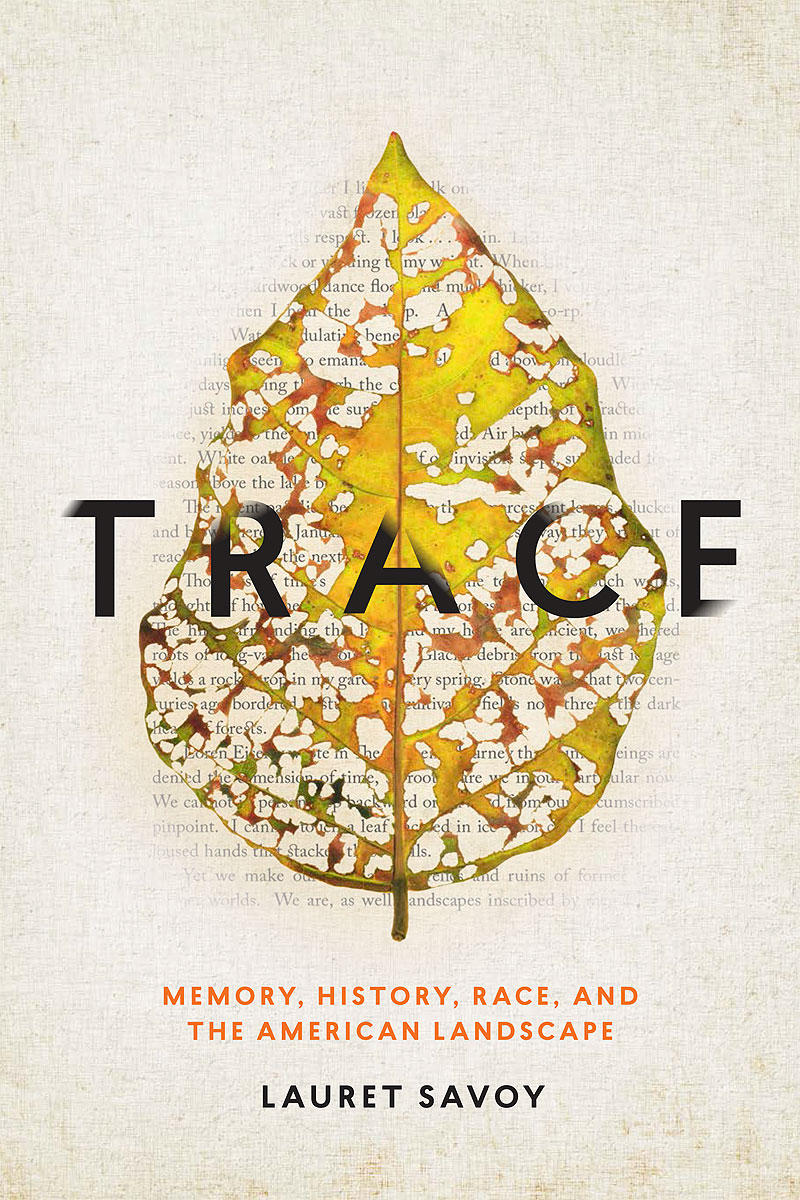 Book Cover - Trace by Lauret Savoy