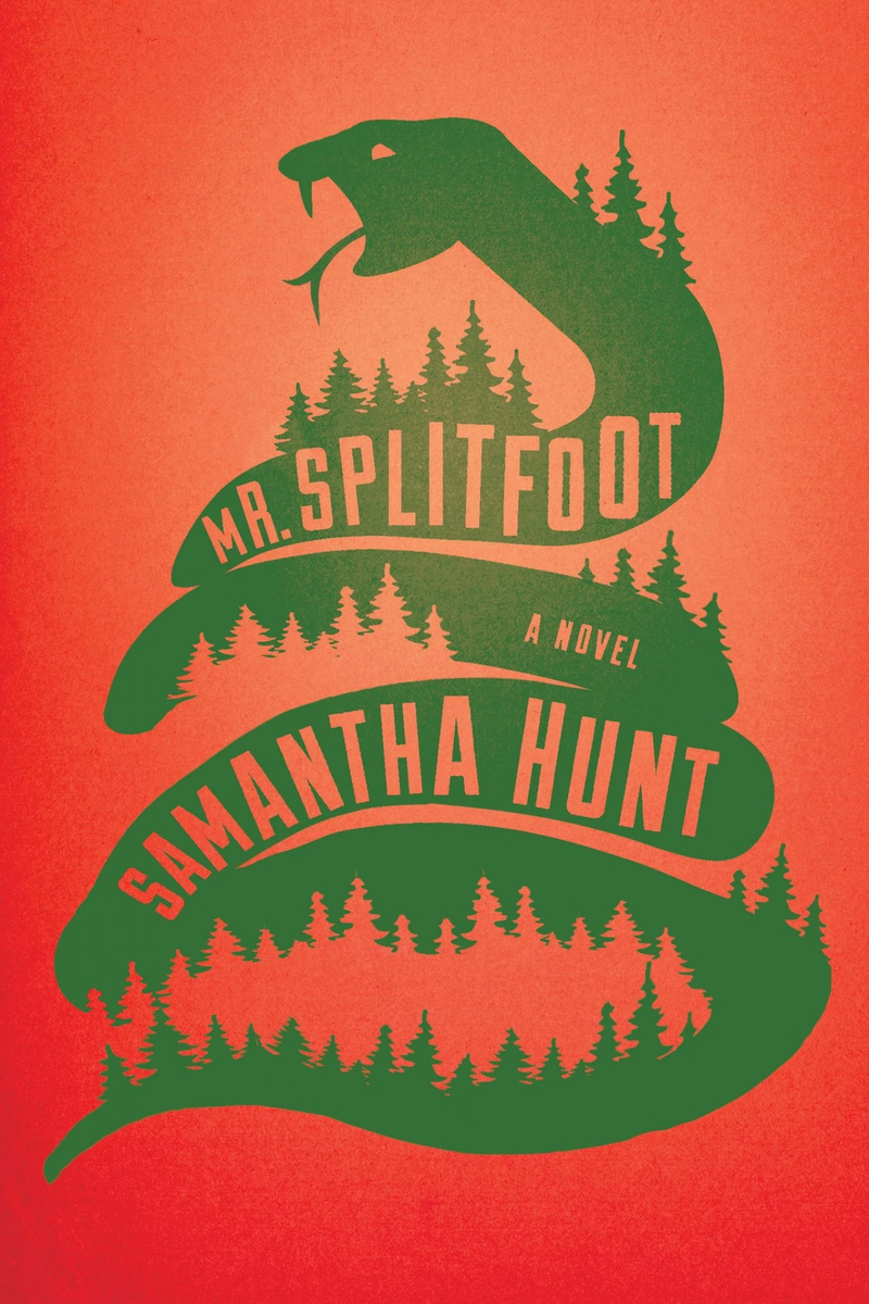 Book Cover - Mr. Splitfoot