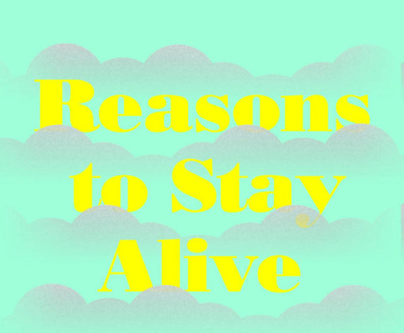 Book Cover - Reasons to Stay Alive