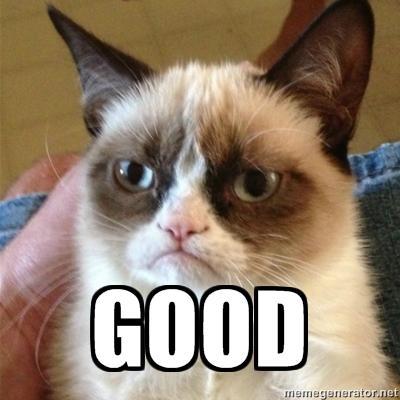 grumpy-cat.jpeg