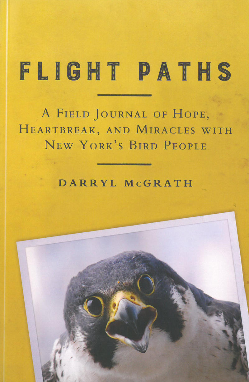 Book Cover - Flight Paths