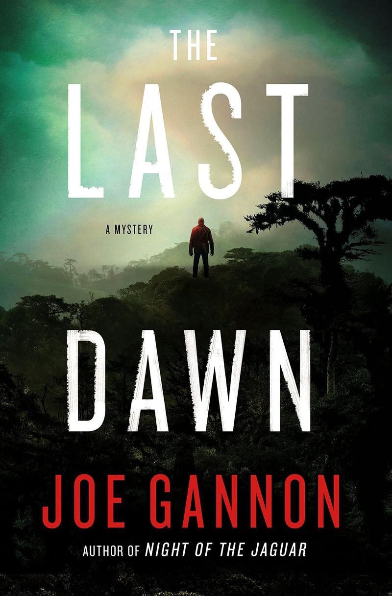 Book Cover - The Last Dawn