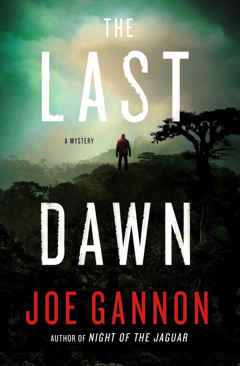 Book Cover - The Last Dawn