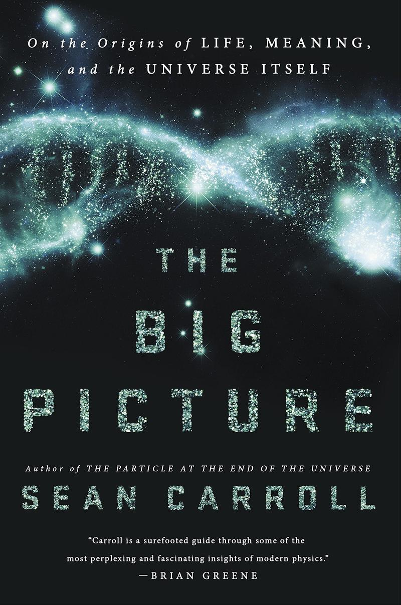 Book Cover - The Big Picture