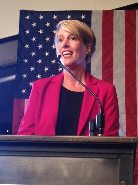 Democrat Zephyr Teachout