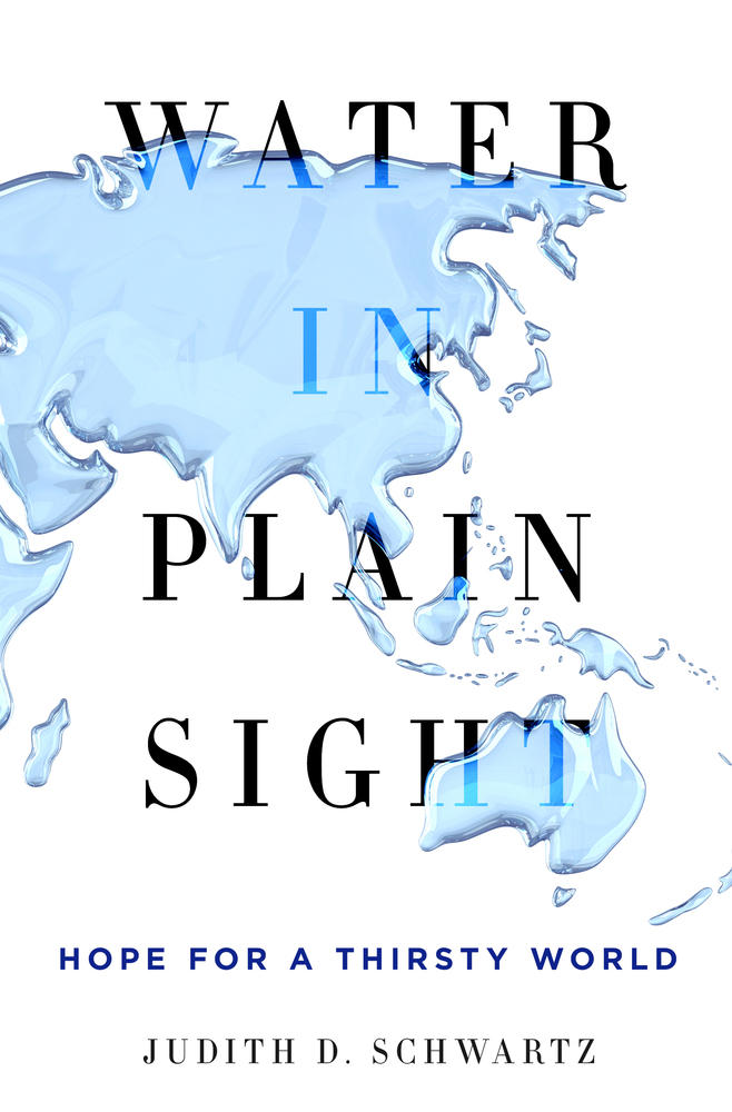 Book Cover - Water in Plain Sight