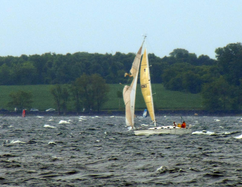 Mayor's Cup 2016 sailboat with torn headsail