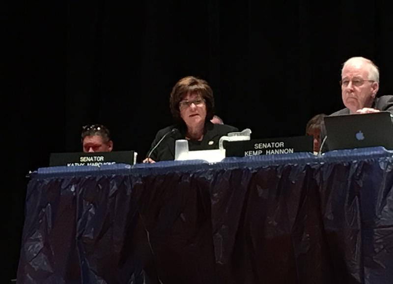 Republican State Senator Kathy Marchione presided over the marathon 10-hour session at Hoosick Falls Central School.