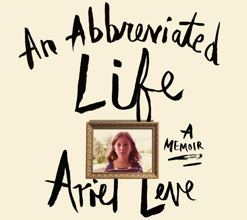 Book Cover - An Abbreviated Life