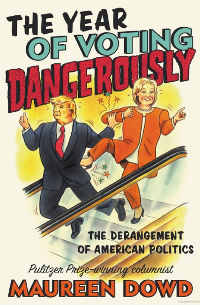 Book Cove r- The Year of Voting Dangerously