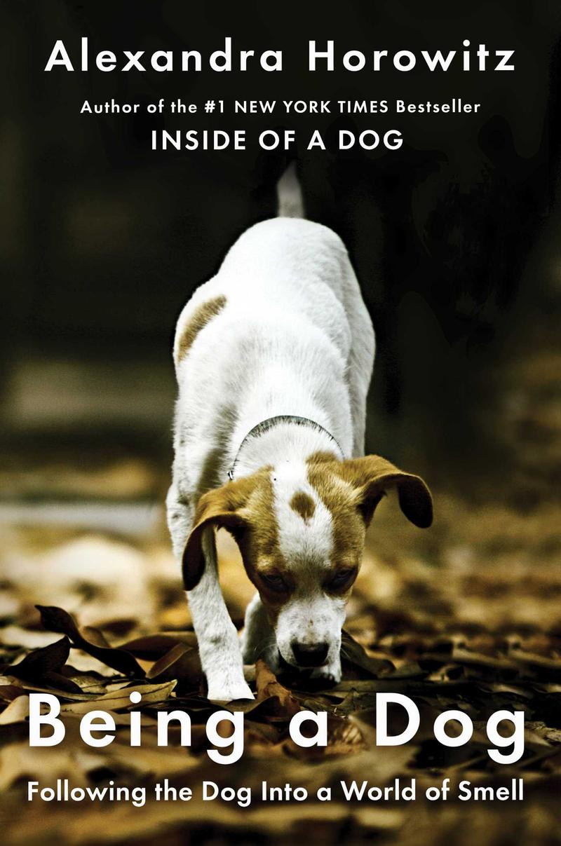 Book Cover - Being a Dog
