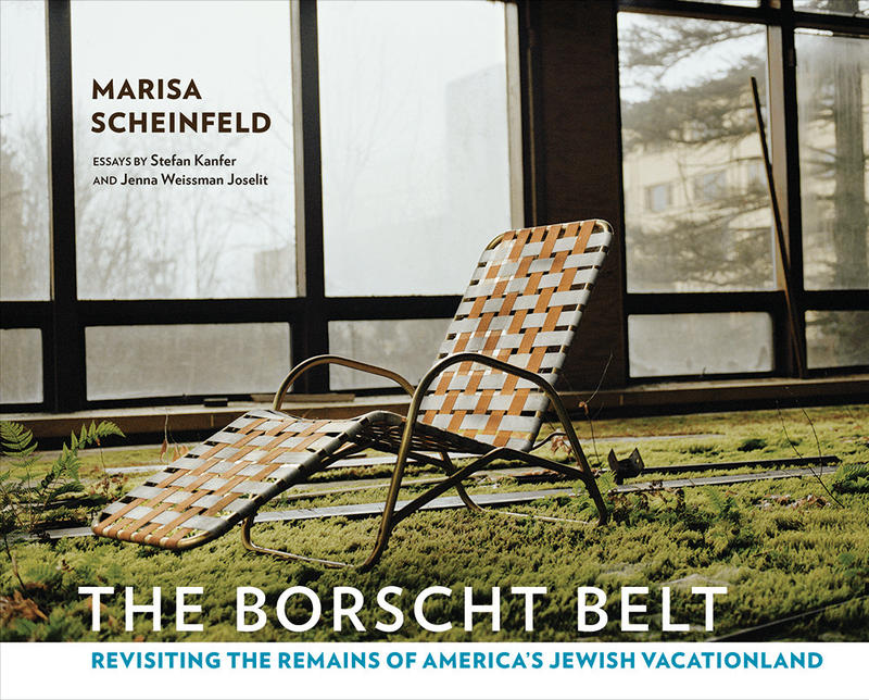 Book Cover - The Borscht Belt