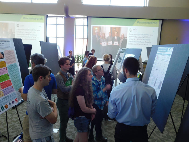 Students at poster session during UVM Student Research Conference