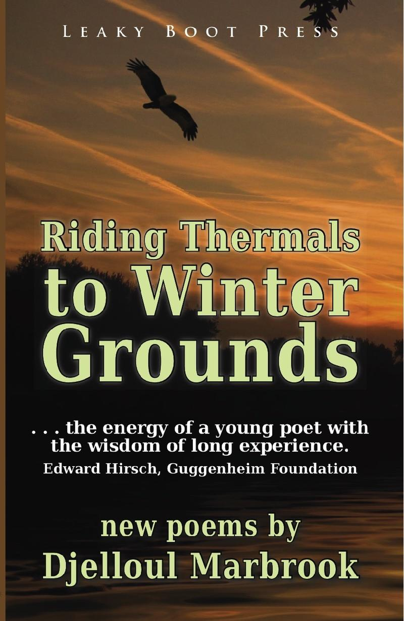 Book Cover - Riding Thermals to Winter Grounds
