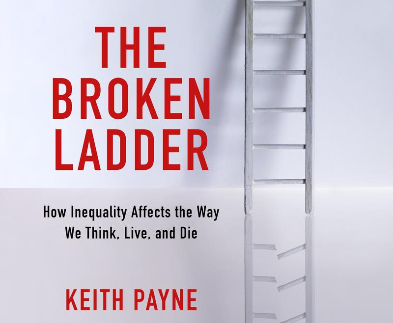 Book Cover - The Broken Ladder