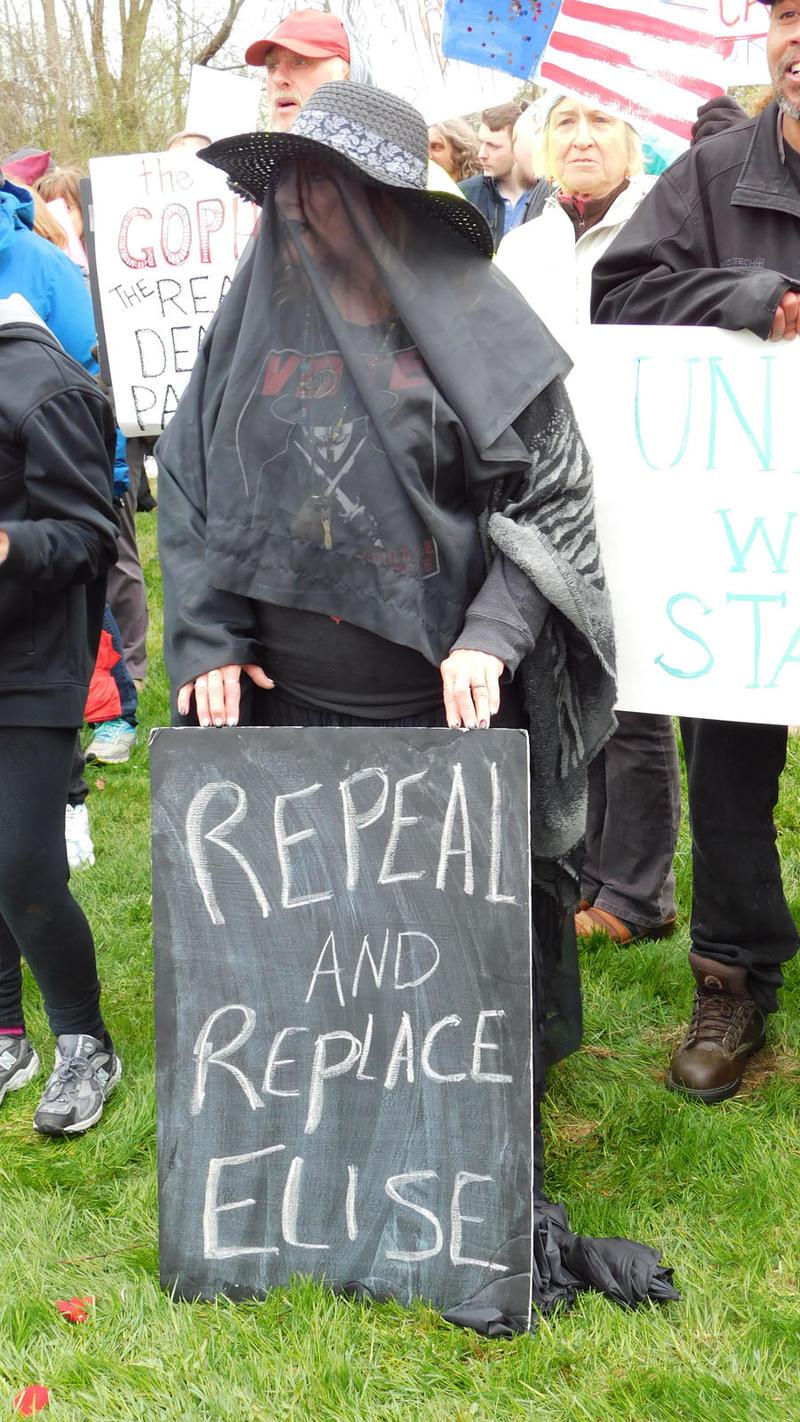 Stefanik protester