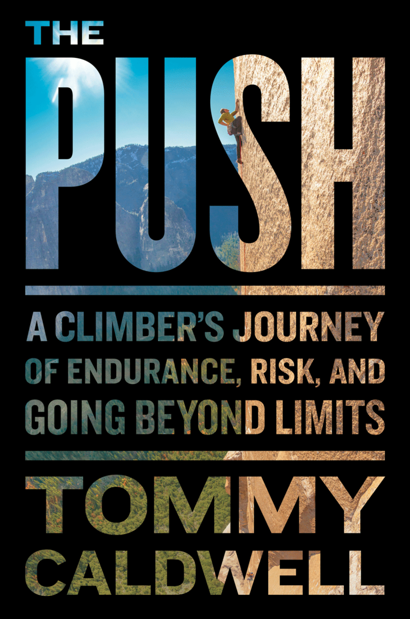 Book Cover - The Push
