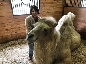 Miyako Kinoshita with  a Bactrian camel