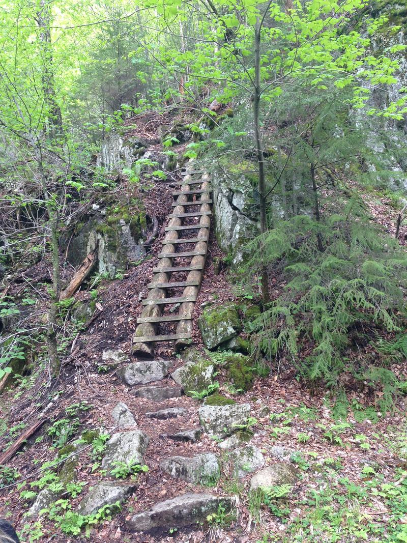 One of the ladders utilized along the trail