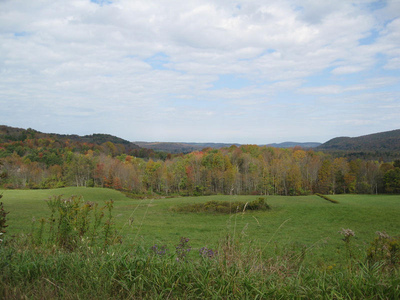 Ladscape in Otsego county, New York