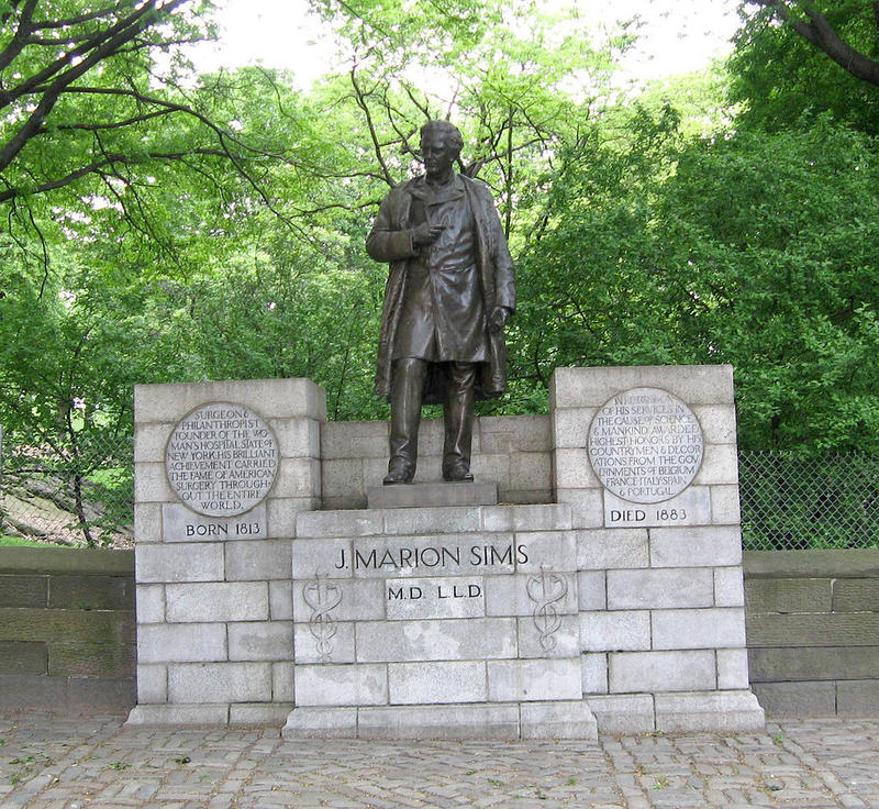 Statue of J. Marion Sims on Fifth Avenue, on the wall of Central Park