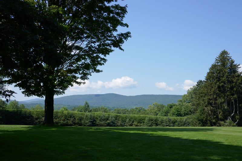 View at Tanglewood