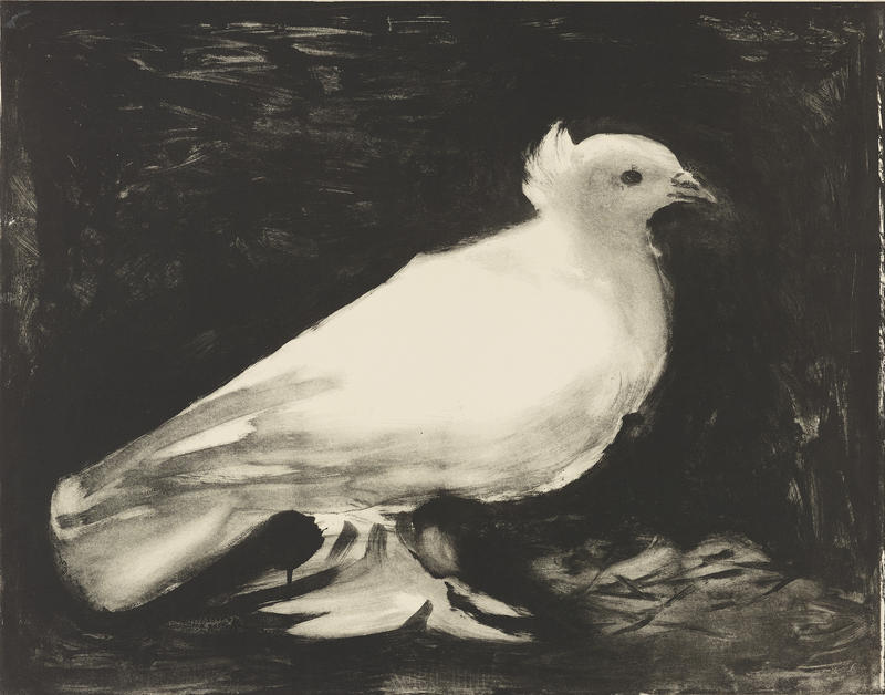 The Dove, 1949. Lithograph printed from a zinc plate on paper, sheet: 22 x 30 in. Philadelphia Museum of Art. Gift of the Philadelphia Water Color Club, 1950, 1950.7.1