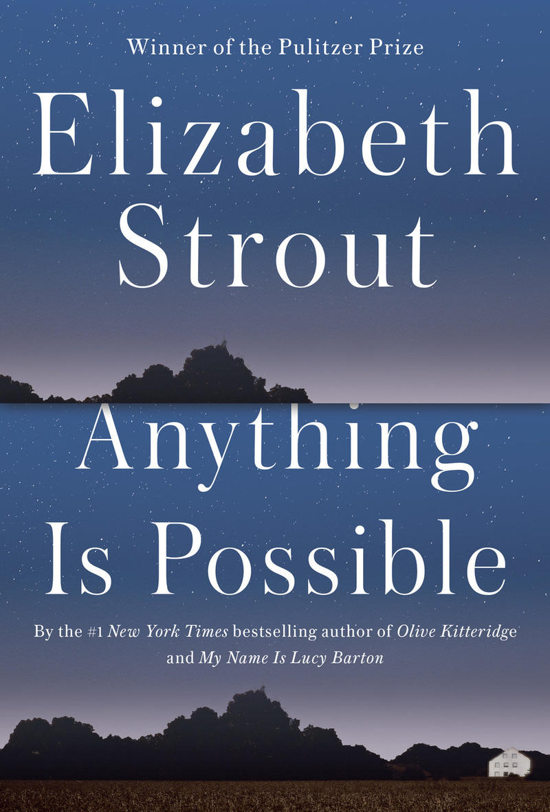 Book Cover - Anything is Possible