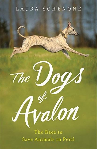 Book Cover - The Dogs of Avalon