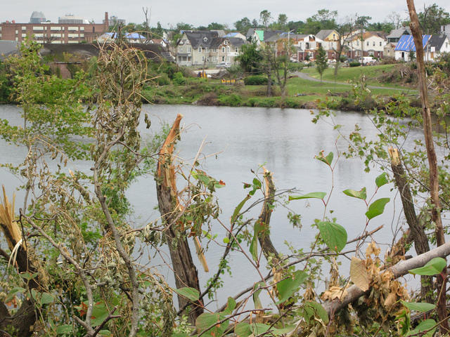 The landscape of the East Forest Park neighborhood around Watershops Pond was significantly changed by the 2011 tornado