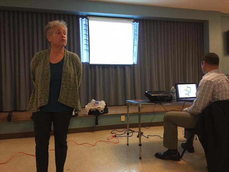 Julie Elson of the New Scotland/Woodlawn Neighborhood association.