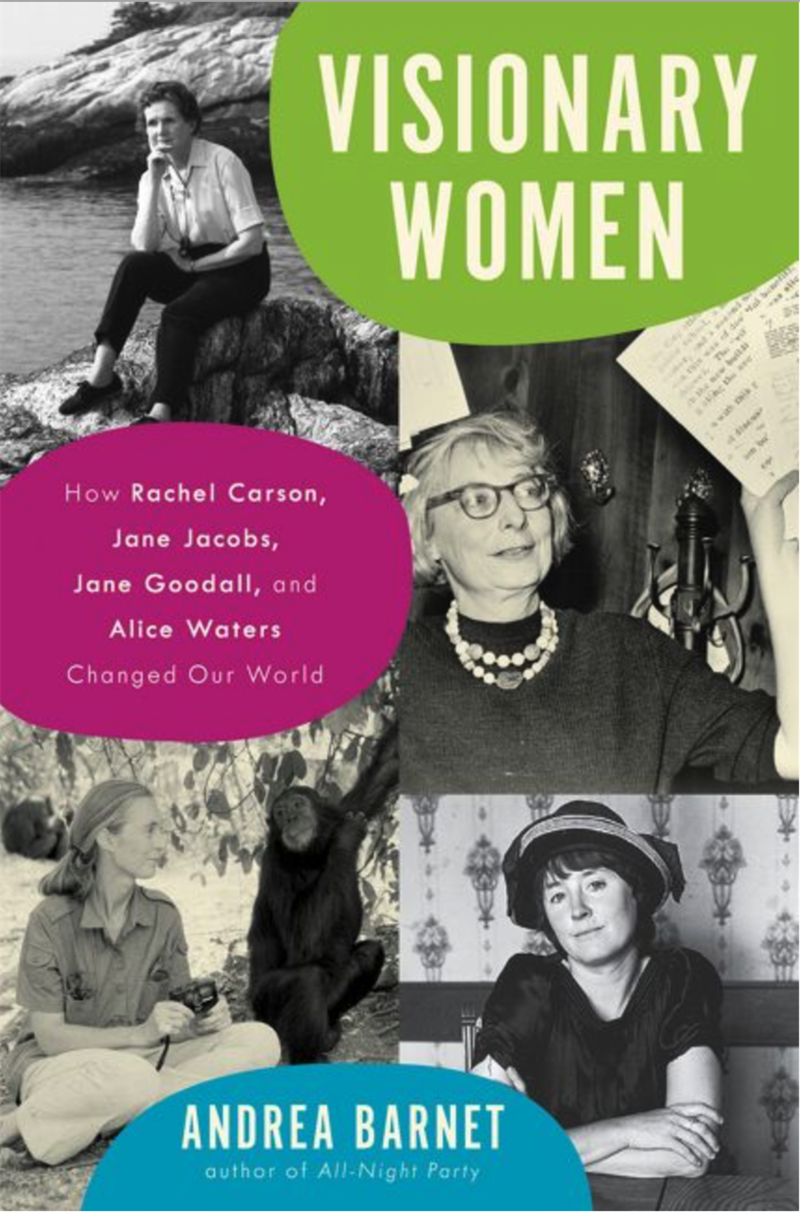 Book Cover - Visionary Women