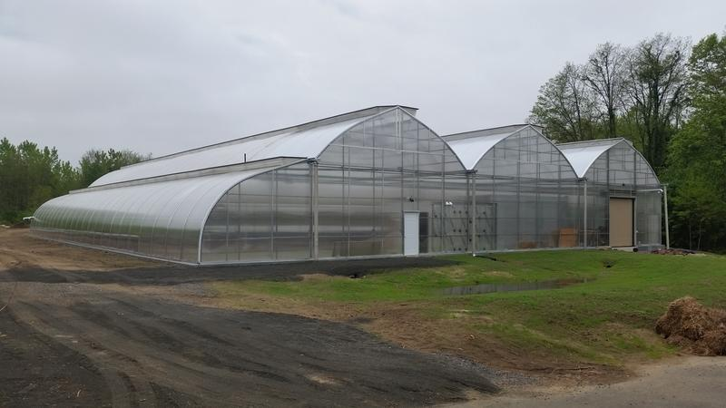The Wellspring Harvest greenhouse in Springfield's Indian Orchard neighborhood