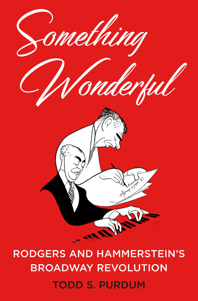 Book Cover - Something Wonderful
