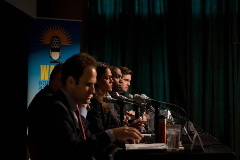 NY-19 Democratic hopefuls at WAMC's debate in May.