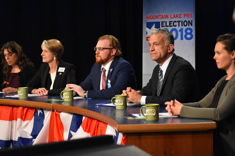 Democrats in NY 21st District primary debate at MLPBS in Plattsburgh
