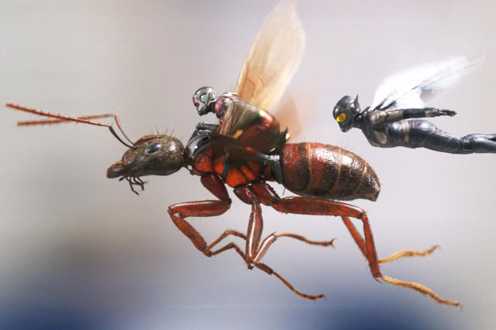 "Still from ""Ant Man and The Wasp"" movie"