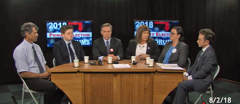 Screencap of Vermont Democratic Primary Forum. From left: John Rodgers, Ethan Sonneborn, James Ehlers, Christine Hallquist, Brenda Siegel and moderator Xander Landen