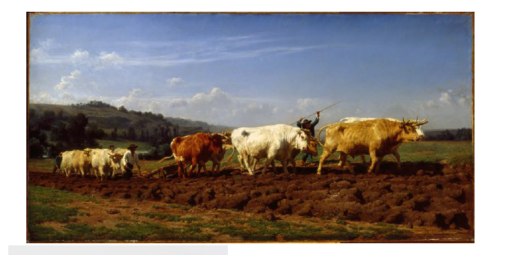 Rosa Bonheur (1822–1899) Plowing in Nivernais 1850. Bequest of John Ringling 1936 SN433, Collection of the John and Mable Ringling Museum of Art, the State Art Museum of Florida, Florida State University, Sarasota, FL. Courtesy American Federation of Arts