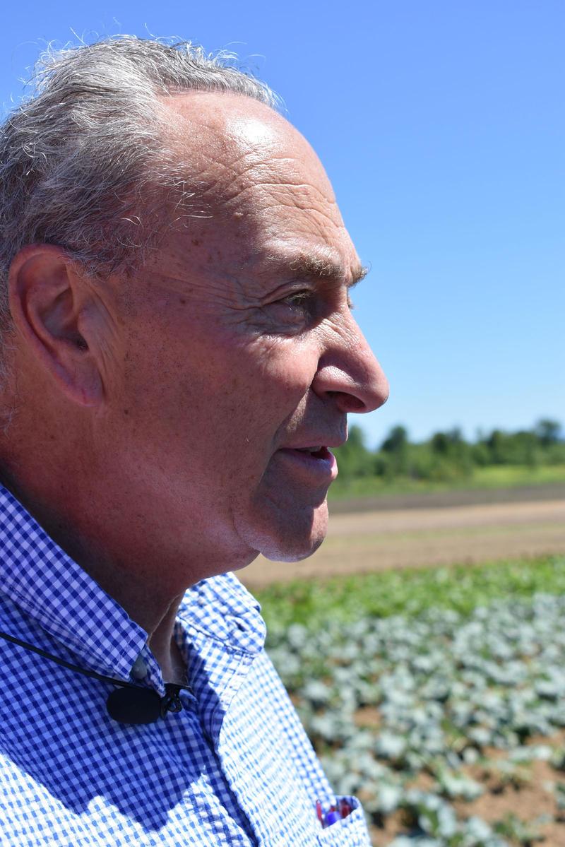 Senator Charles Schumer at the Essex Farm