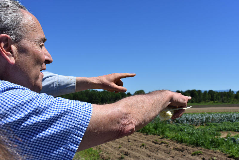 Senator Schumer looks out at the vegetables