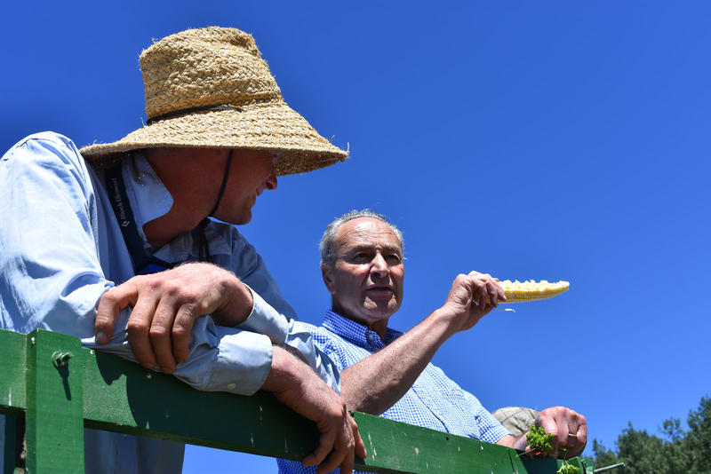 Senator Schumer tries some fresh corn as he talks with Essex Farm owner Mark Kimball