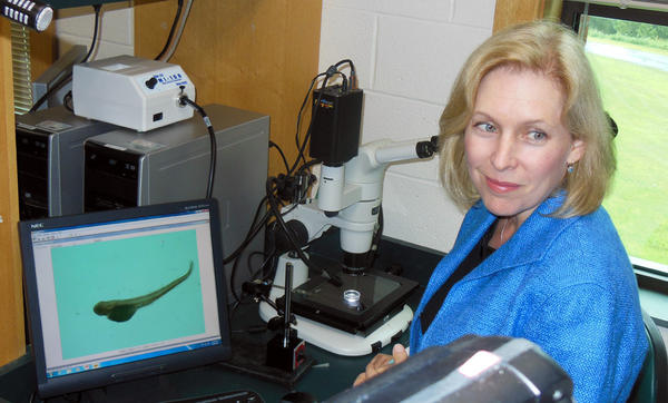 Senator Kirsten Gillibrand at Trudeau Institute laboratories