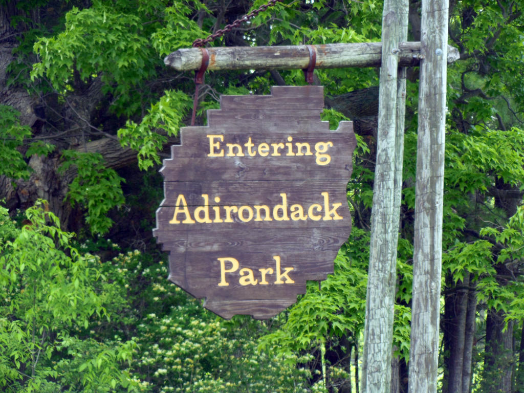 Adirondack Experience - cover